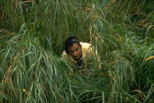 1997 Doral Ryder Open: CBS announcer David Feherty alone, looking through tall grass during second round.  Image: Jacqueline Duvoisin