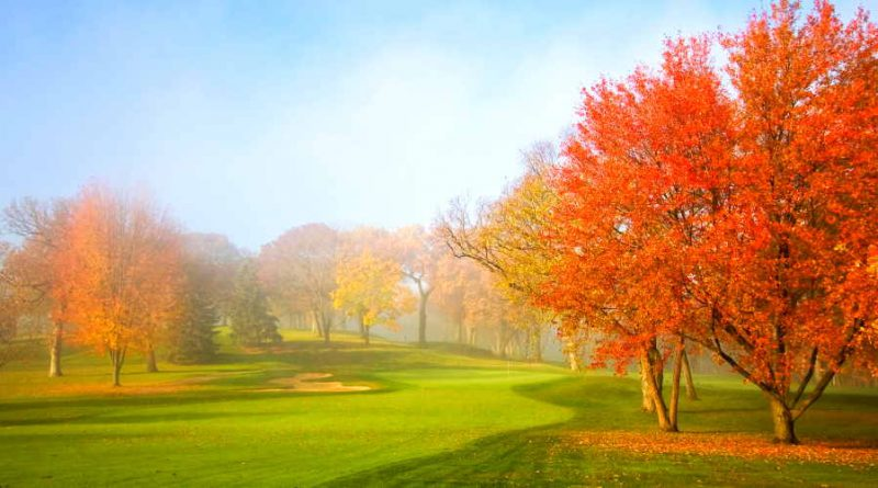 fall golf course image